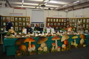 agrinatura-farmer-market