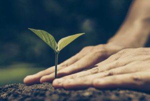 agrinatura-sviluppo-sostenibile